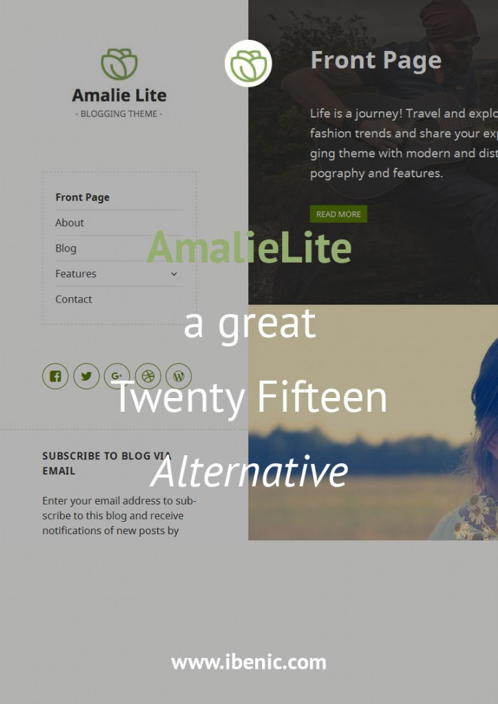 AmalieLite - Alternative to Twenty Fifteen